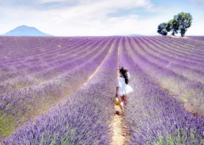 Provence Travel Agency