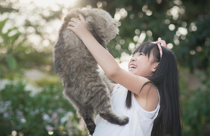 Pet Food Sales in China Reach US$2.2 Billion (+30.8%)