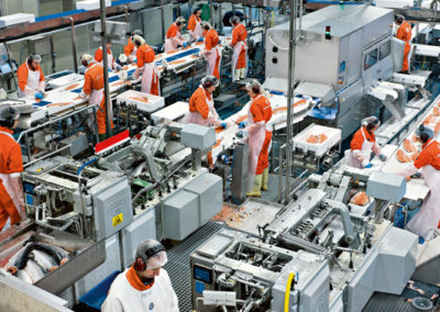 Food Factory Processing