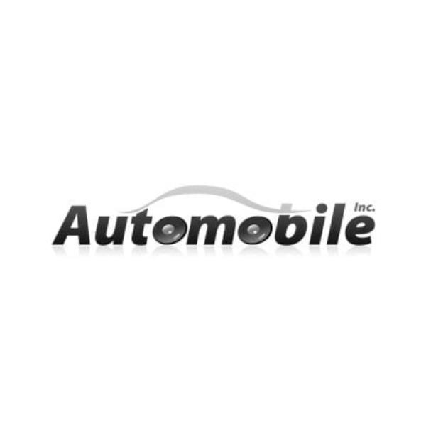 logo Automotive Service Brand in China