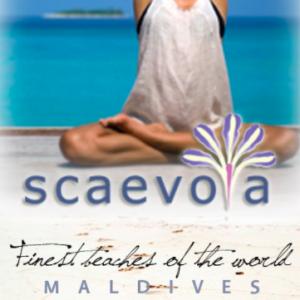 logo Maldivian Travel Agency in China